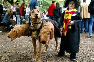 harry-potter-cerberus-family-costume